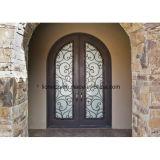 Dekorative Sicherheits-Eisen-Eintrag-Türen