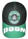 Chapeau d'éponge (SP005)