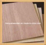 1220X2440m m Okume Face Plywood para Furniture (QDGL146)