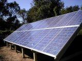 Poly panneau solaire (SL280CE-36)
