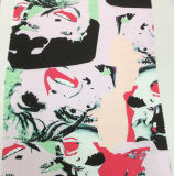 Vestuário impresso do poliéster da face teste padrão creativo e tela de matéria têxtil Home
