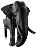 現代デザインのガラス繊維の動物の椅子