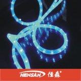 Lumière décorative de corde (CE, GS, EMC, RoHS)