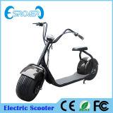 Motociclo elettrico della bicicletta delle 2016 due rotelle più popolare (Esrover E5)