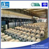 Bobina d'acciaio galvanizzata con SGCC