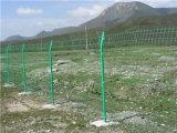 Rete metallica del giardino/rete metallica bilaterale rete fissa del giardino