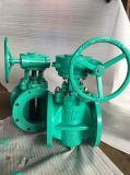 Тип клапан дуктильного утюга ексцентрическый штепсельной вилки