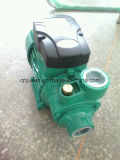 세륨 Taizhou 100%년 Copper Wire Wholesale Vortex Peripheral Qb80 Qb60 Clean Water Pump 0.5HP에 1HP