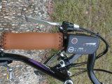 En15194 (白鳥)の2016人の女性都市電気バイク