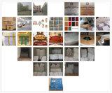 Ledernes Sofa mit Sofa-Stuhl für Wohnzimmer-Möbel (521)