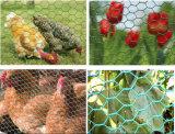 Гальванизированная шестиугольная сетка цыпленка ячеистой сети