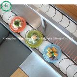 Chaîne de convoyeur de sushi des ventes en gros UHMWPE