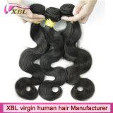Premiers cheveux humains de Remi de premier Brésilien de vente