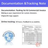 DHL van de Agent van de instructie de Uitdrukkelijke (DHL, UPS, Fedex, TNT) Dienst van de Agent