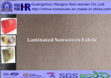 Manufacturer professionale di Laminated /Laminating /Lamination pp Spunbond Nonwoven Fabric (no. A11Y003)