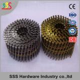 Un chiodo pneumatico da 15 gradi, chiodo galvanizzato della bobina del tetto del pallet, chiodo del pallet