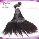 Cheveu indien de tempe de Vierge aucun tissage de cheveux humains de procédé chimique