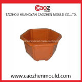 異なった種類のプラスチック注入の植木鉢型