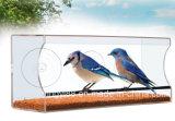 Voeder van de Vogel van het Venster van de douane de Grote & Duidelijke Acryl met de Gaten van het Afvoerkanaal