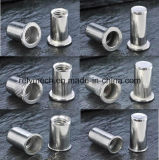 Auto/Aviation/Railway를 위한 스테인리스 Steel 또는 Carbon Steel Rivet Nut