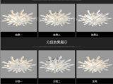 Indicatori luminosi moderni dell'acrilico LED per il salone, ente acrilico