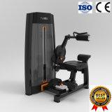 Machine van de Trainer van de Apparatuur van de Geschiktheid van de Gymnastiek van de club de Buik