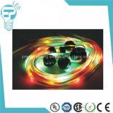 베스트셀러 재충전용 LED 번쩍이는 LED 빛을내는 레이스