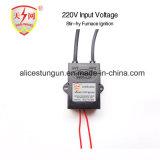 encendedor electrónico entrado 220V del gas