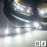 300LEDs SMD 5630 LED flexible Streifen-Lampe