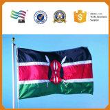 I piedi di promozione 3X5 hanno ricamato la bandiera nazionale del paese