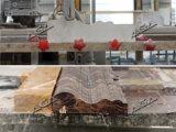 花こう岩の機械(FX1200)を形作る大理石のプロフィールの打抜き機の端