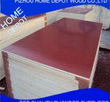 Les feuilles marines de contre-plaqué, film ont fait face au contre-plaqué 18mm (Shuttering, coffrage, bois de construction de construction)