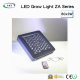 Dimmable LED는 증가한다 제광기와 타이머 (렌즈)에 가볍게