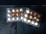 China Clear Pet Bandejas de ovo de plástico para ovos de codorna