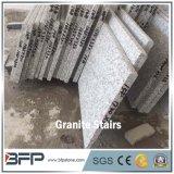 Punto grigio fiammeggiato del granito di G623 Lara da vendere il pavimento del granito e