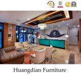 Muebles del hotel de 4 estrellas (HD205)
