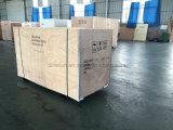 Gruppo elettrogeno di Weifang Tianhe/diesel diesel cinesi Genset marca della Cina