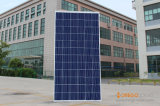 Q-Cells Poly Solar Cells / Panel Energy System 320W-325W