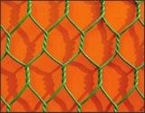 China-Lieferanten-niedrigster Preis-Huhn-Maschendraht/Huhn-Draht-Filetarbeit/sechseckiger Maschendraht (Fabrikfertigung)