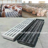 ブタの漏出肥料の版型の具体的な床のスラット型