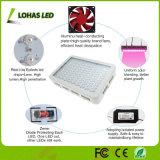 300W-1200W lo spettro completo LED si sviluppa chiaro per la serra dell'interno che pianta i fiori/semi/ortaggi