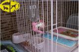 Bouteille d'animal familier de Dinker de l'eau de chiot de crabot d'animal familier, 330cc/gicleur 16mm