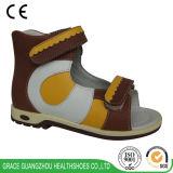 다채로운 아이 정형외과용 특수 신발이 은총 수직 건강에 의하여 구두를 신긴다