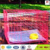 Panier d'animal familier en métal/emboîtement d'oiseau/cage de crabot/cage de poulet pliables