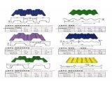 Beau panneau de toiture pour l'entrepôt et l'usine préfabriquée et le stationnement commercial