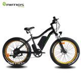 Bicicleta 2017 elétrica de Montain do pneu gordo da venda direta 500W 48V da fábrica com En15194