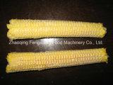 Máquina de trituração de milho doce Mz-368, máquina de processamento de milho, Thresher