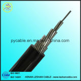 câble supplémentaire d'ABC de conducteur isolé par XLPE de 1kv 10kv ACSR