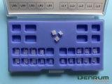 Denrum iso della FDA di ceramica ortodontica del Ce Edgewise/di Roth