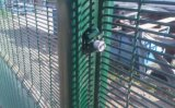 Cerca revestida da cerca de segurança 358 da cerca de segurança do pó (XMM-358)